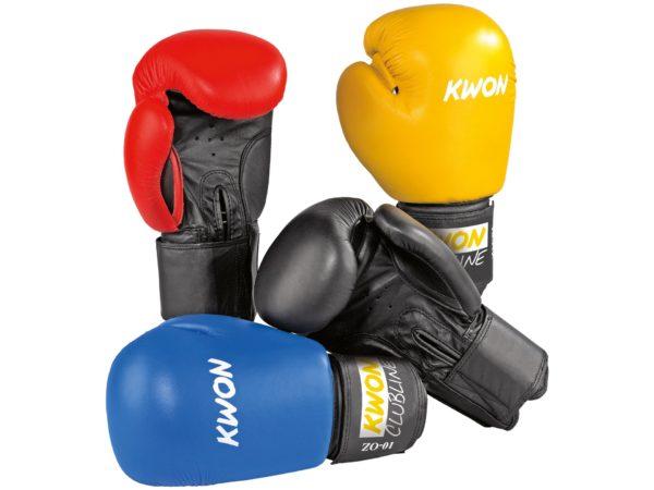 KWON Boxhandschuhe Pointer II